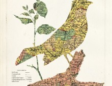 Birds & Map collage