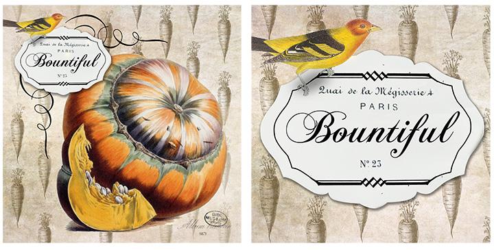 pumpkin 1x