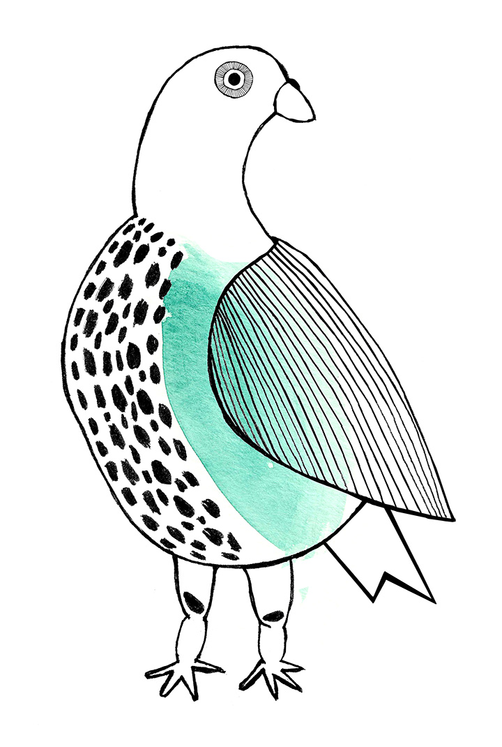 bird drawing_2