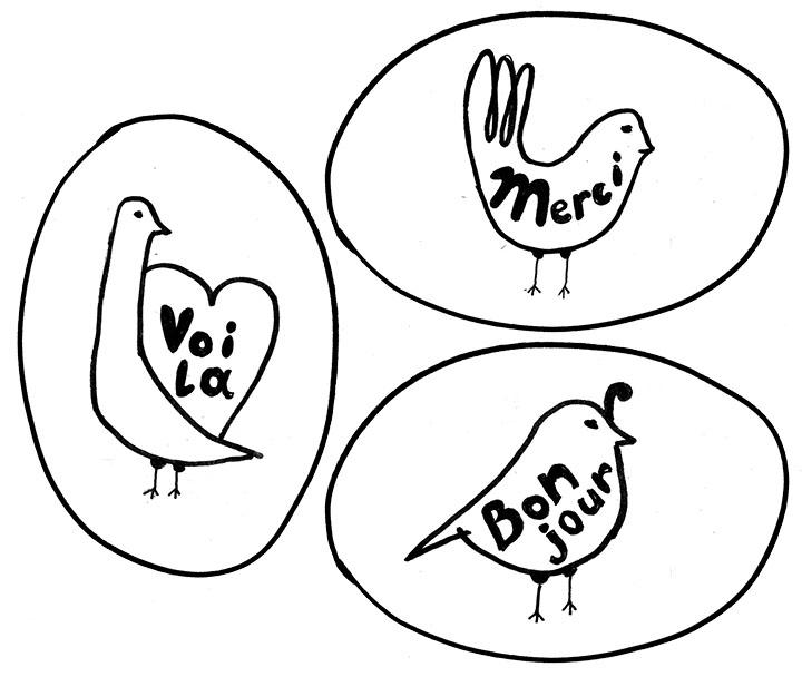 bird-preview7