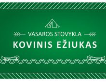Nonprofit Organization Kovinis Eziukas / Kids Summer Camp Poster and Flayer