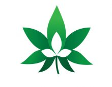 Green Leaf Business Solutions Logotype ©
