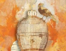 Creative Co-op, Inc. ©  / Bird & Cage