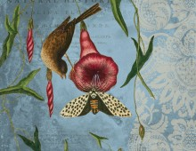 Williamsburg © by Creative Co-op, Inc. / Catesby Birds & Lace