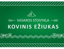 Nonprofit Organization Kovinis Eziukas / Kids Summer Camp Poster and Flayer